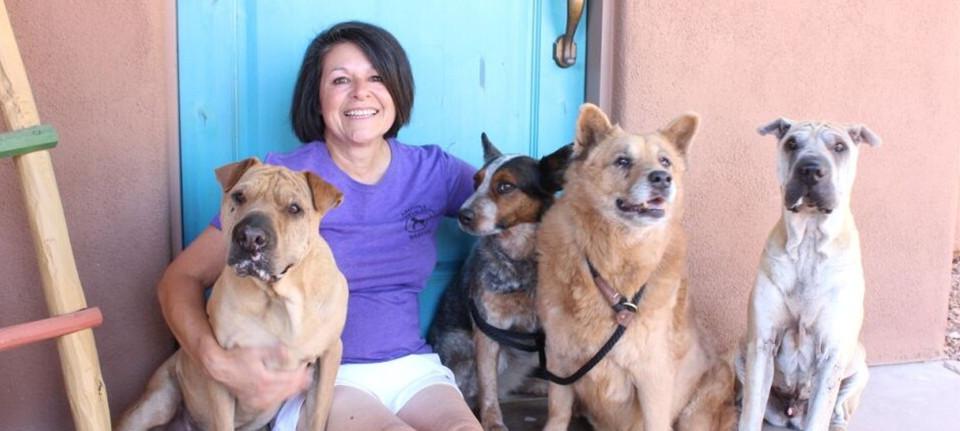 Tucson Dog Trainer Susan Del Signore - New Dogs Old Trix